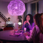 Rademacher mit Philips Hue kompatibel