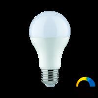 Paulmann LED Boyn 9 W - Weißlicht-Steuerung & App steuerbar