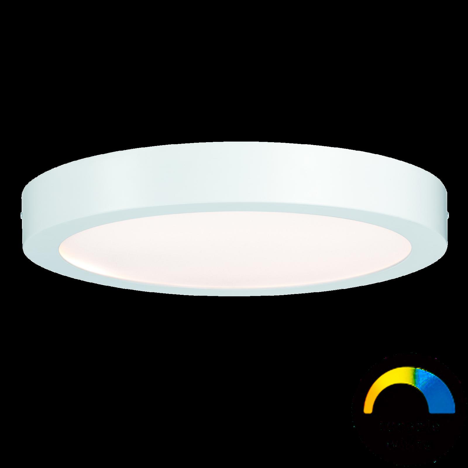 Paulmann LED-Panel Nox 300 mm - Weißlicht-Steuerung & App-steuerbar