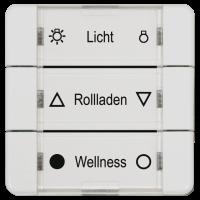 Rademacher Mehrfachwandtaster Aufputz in ultraweiß, batteriebetrieben, 3 Wippschalter, DuoFern-Funk