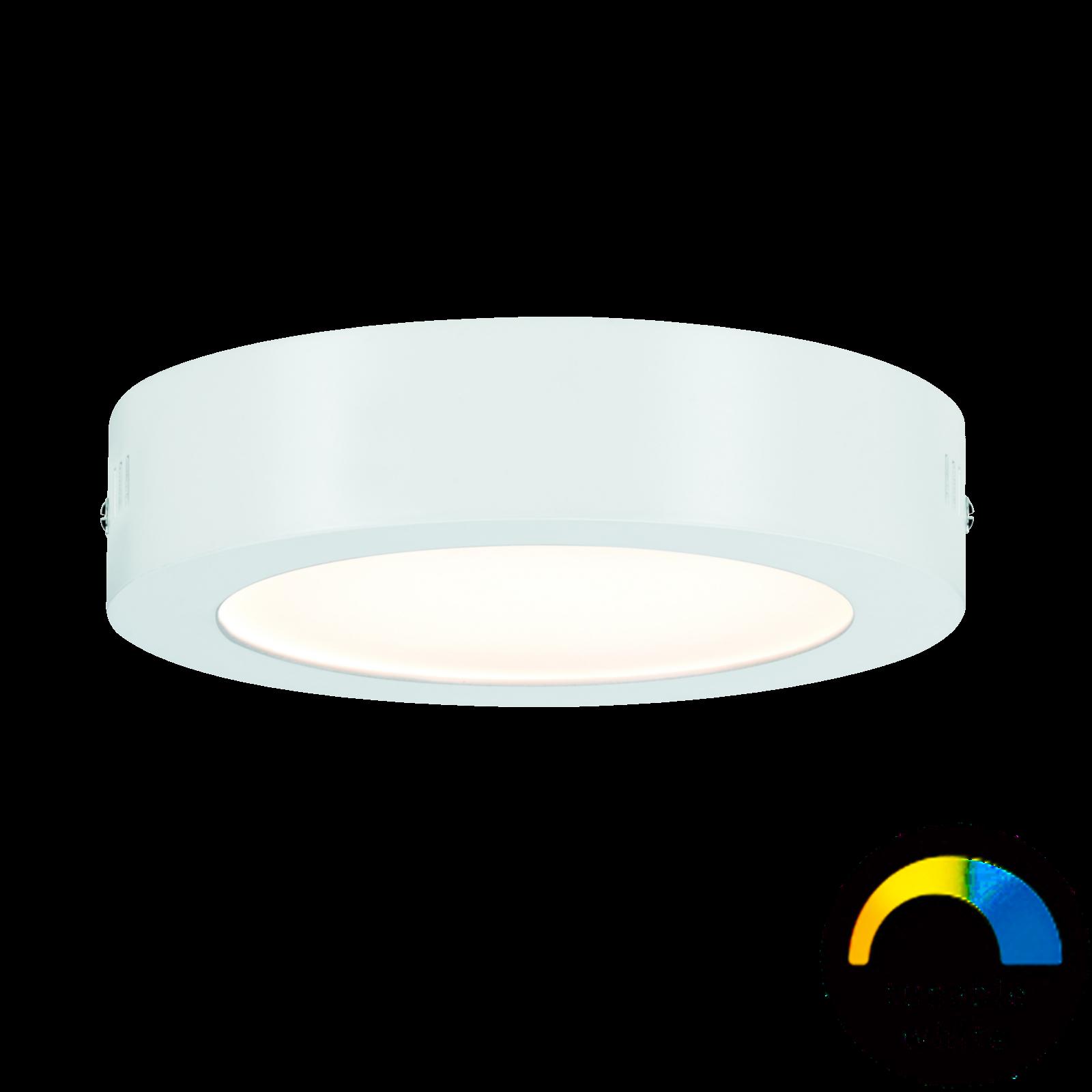 Paulmann LED-Panel Nox 170 mm - Weißlicht-Steuerung & App-steuerbar