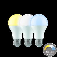 Paulmann LED Boyn 3er Vorteilspaket 9 W E27 - tunable White Weißlichtsteuerung LED Smart Home Leuchtmittel